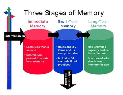 three-stages-of-memory