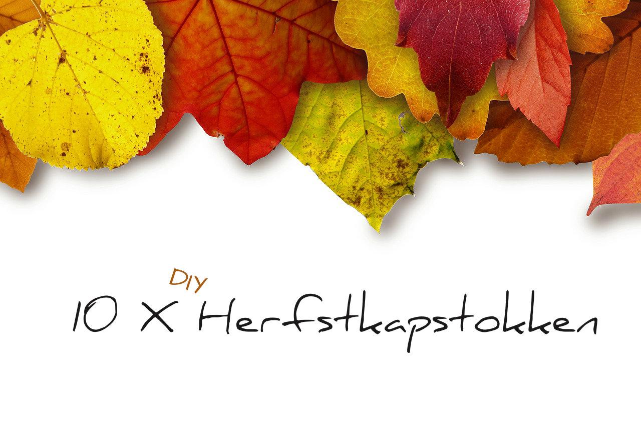 leaves-183414_1280